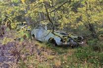 La voiture bleue dans les feuilles jaunes