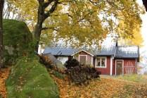 Maison dans la réserve naturelle