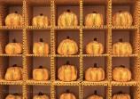 Pumpkins de Kusama