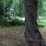 Parc Lund