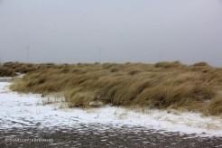 Dune Amager neige