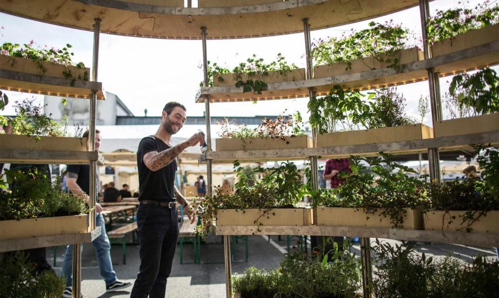 Space-10 urban farming
