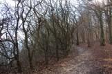 Chemin Falaises de Stevns