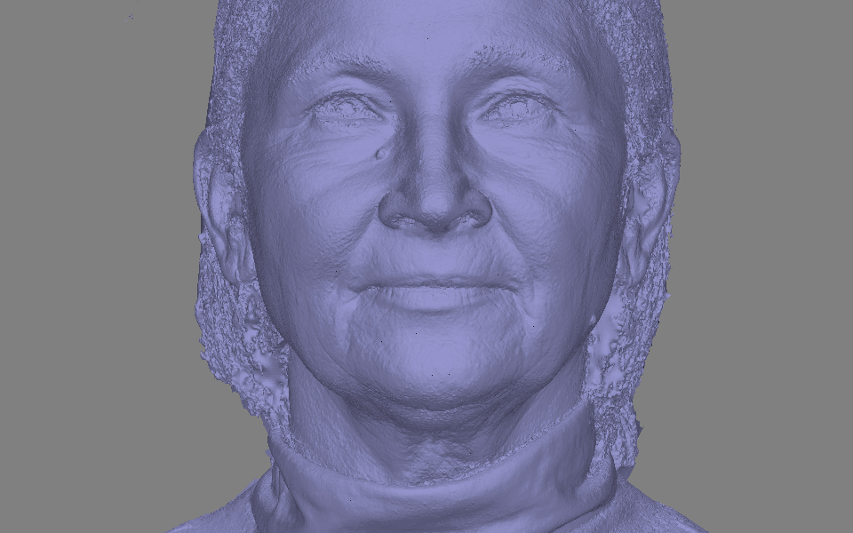 Pore Detail of a 3D Scan