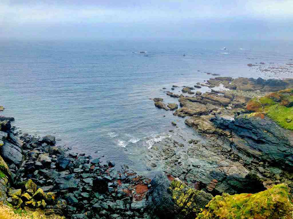 The landscape at Lizard Point in Cornwall, with the calm sea and colourful rocks all around. There is only landscape visible