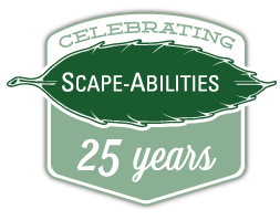 Scape-Abilities 25 year logo