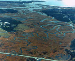 Arial View of Marsh