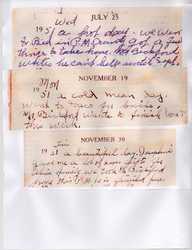 Queenie Seal's Diary