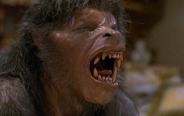 american-werewolf-in-london-an-1981-004-wolf-groan.jpg