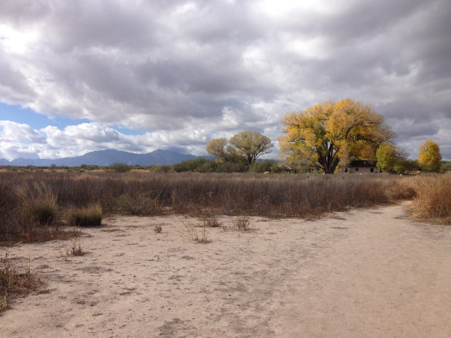 Spectacular view of the Huachuca Mountains behind the San Pedro House.