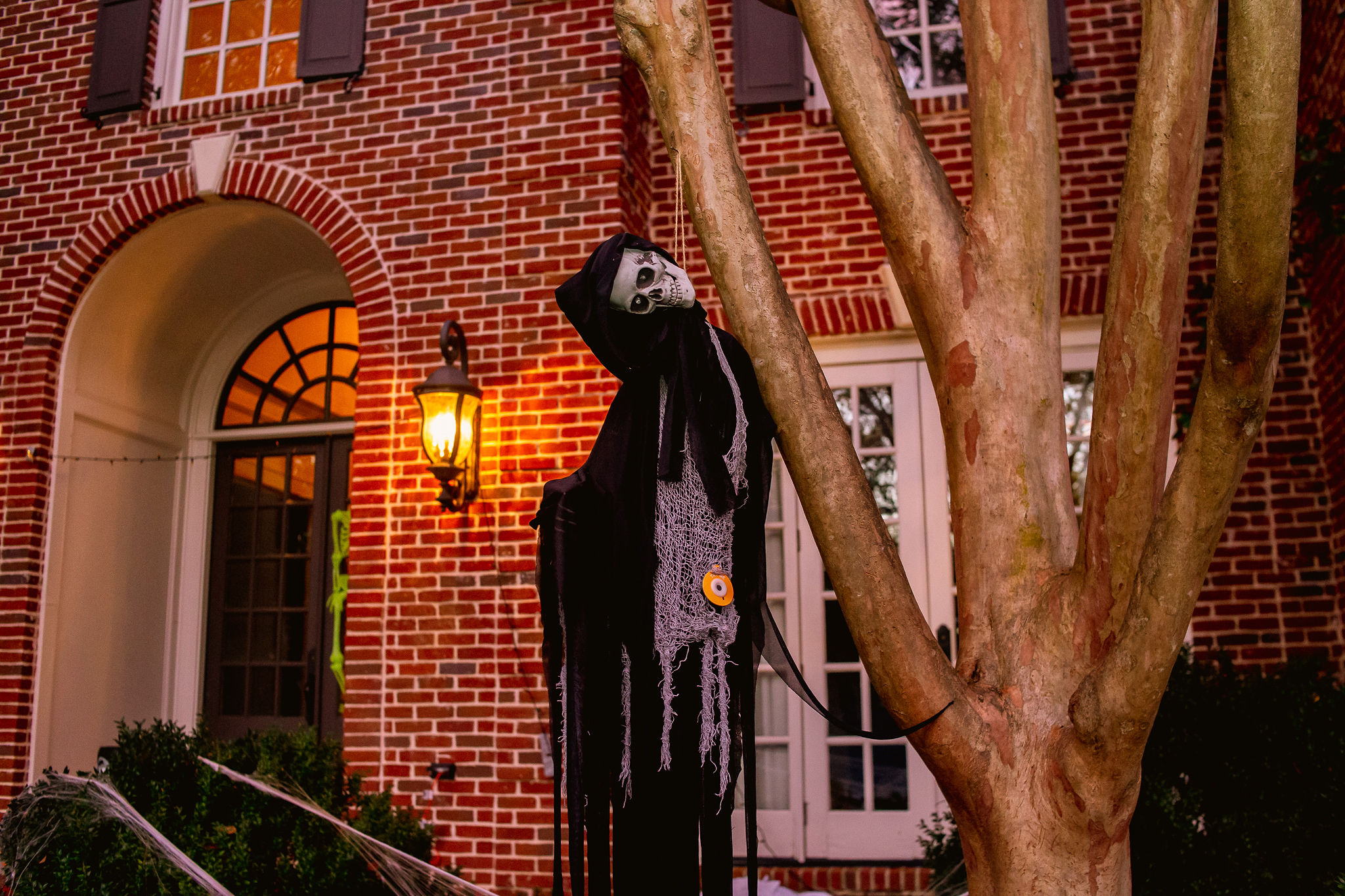skeleton hanging from tree in front yard of brick house for Halloween party