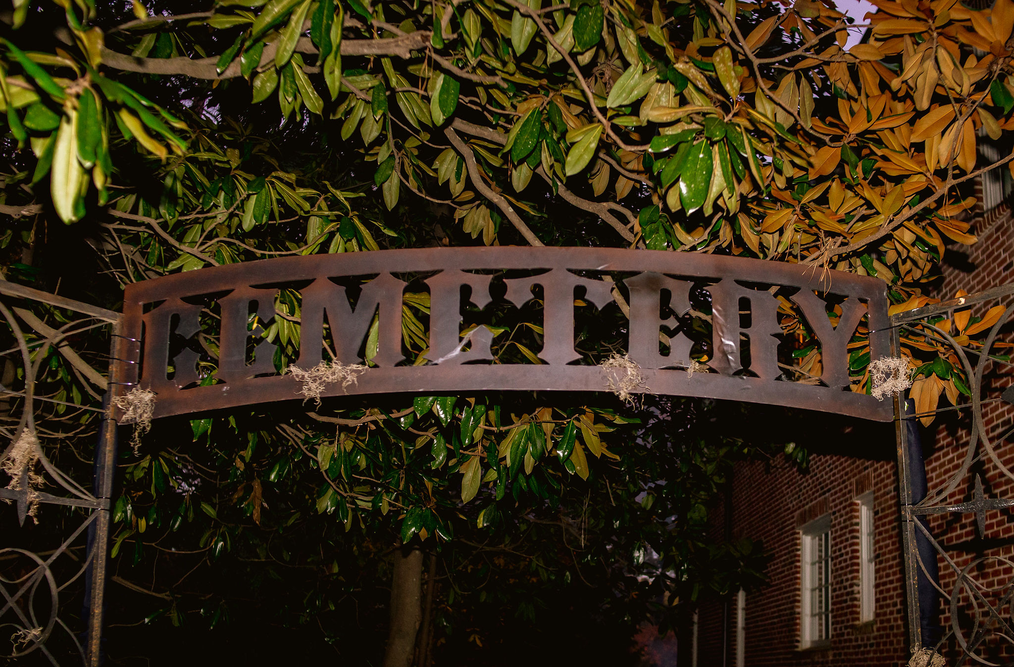 Halloween party iron cemetery sign under magnolia tree