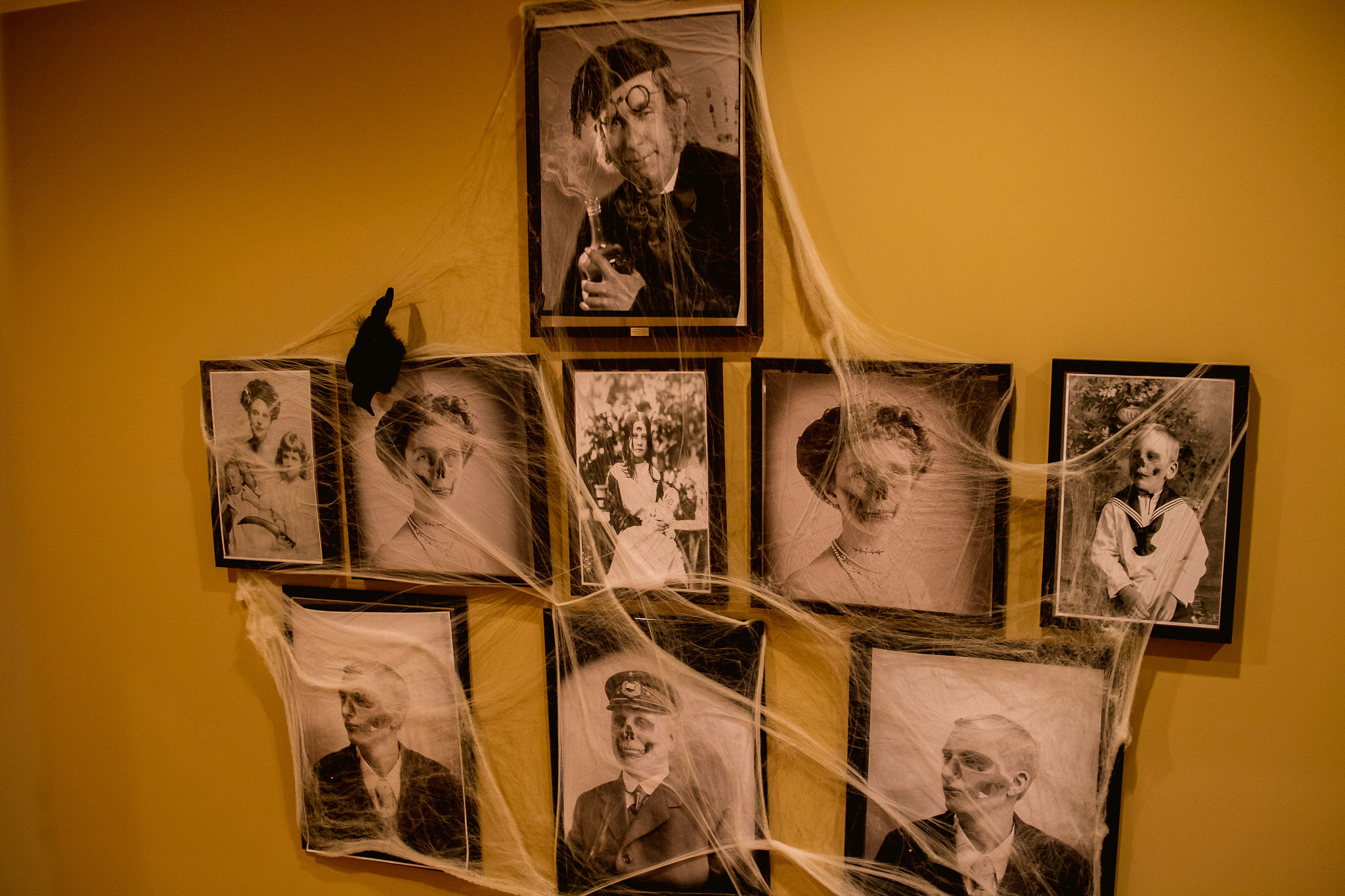 creepy Halloween party portrait wall with cobwebs and black bird