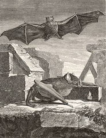 Great_Vampire_Bat