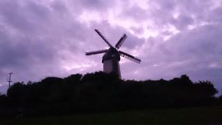 Skerries Mills looking well.