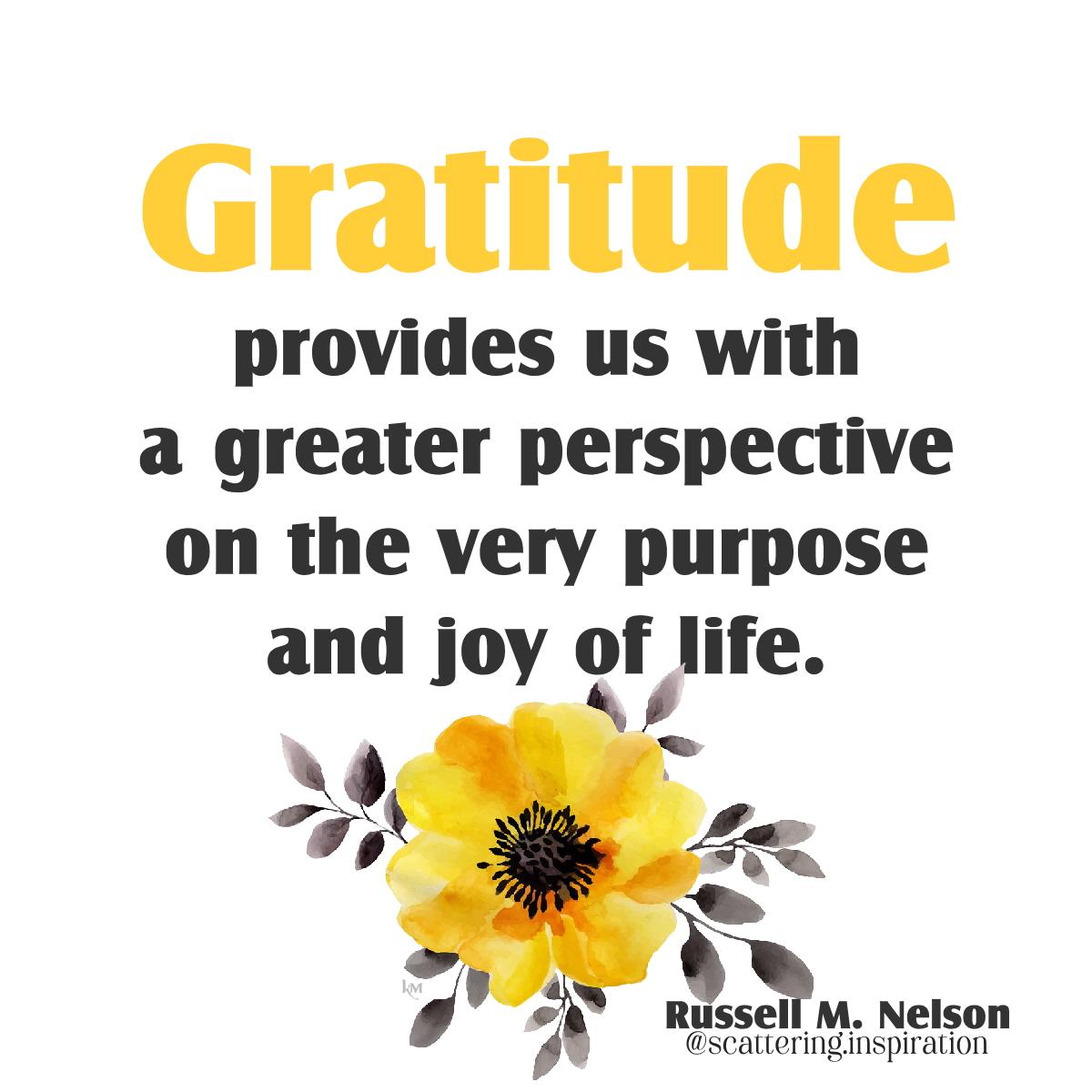 gratitude provides