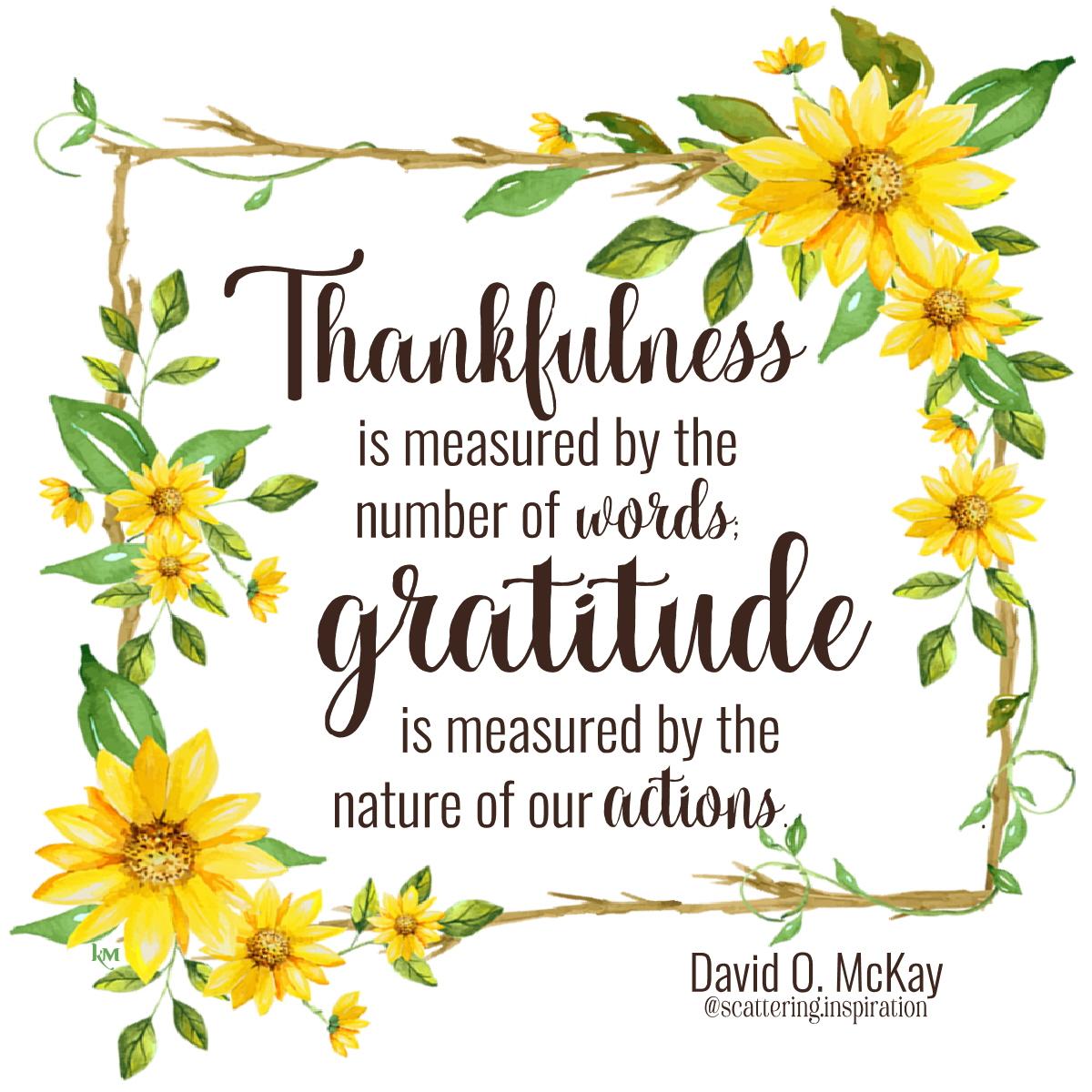 thankfulness gratitude
