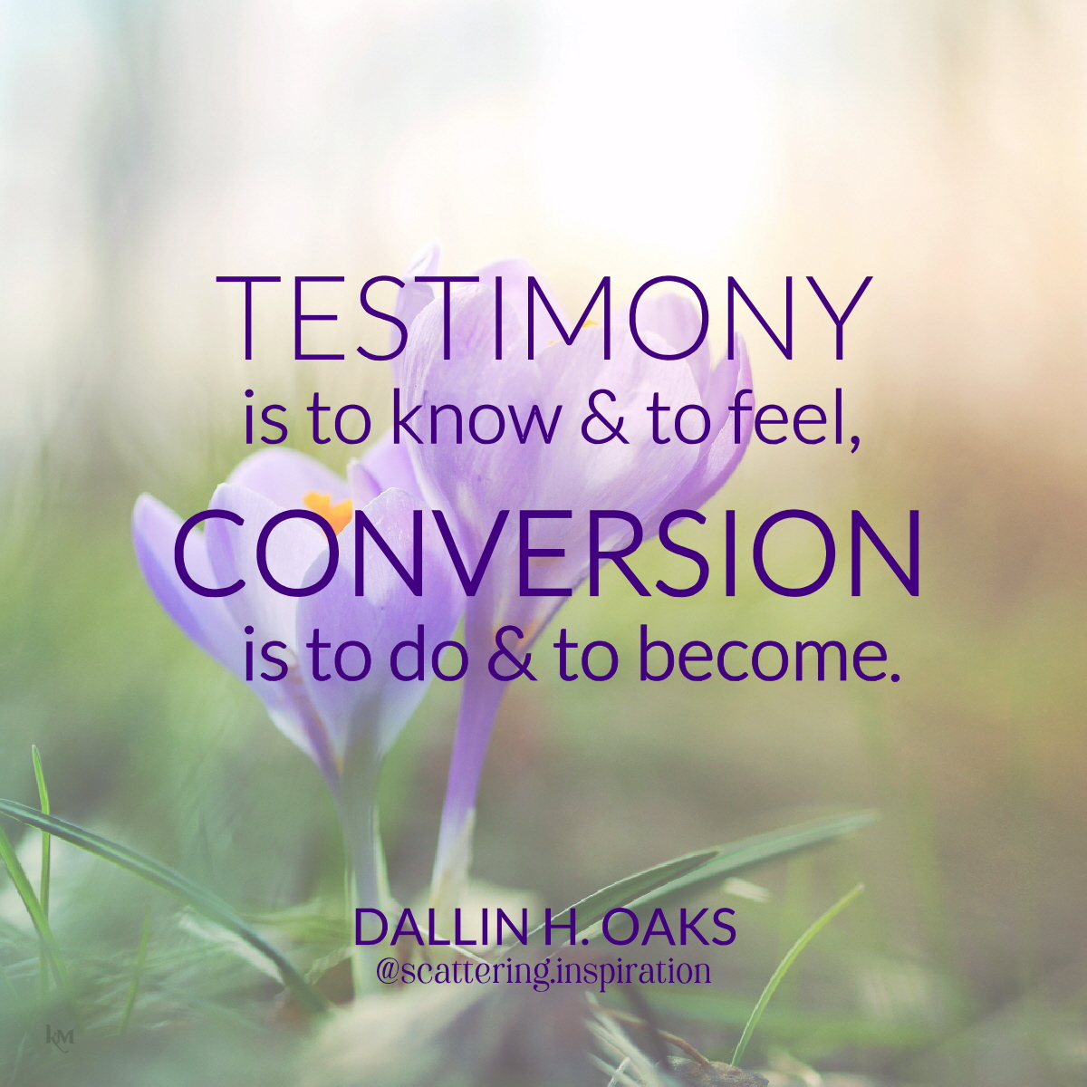 testimony conversion