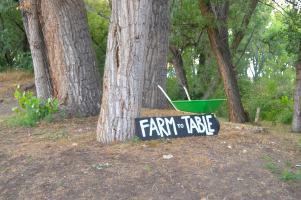 Farm Dinner Ollin Farms