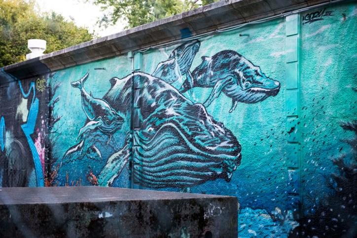 Mural da balea do Castro 4_8_2015 - Alberto Trabada