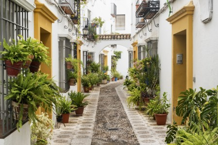 Cordoba (Andalucia Spain): old typical street in the Juderia with plants and flowers