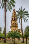 Mosque Cathedral of Cordoba also known as the Great Mosque of Cordoba is regarded as one of the most accomplished monuments of Moorish architecture Spain. Orange garden and Bell tower