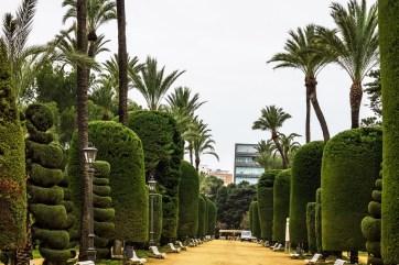 Cadiz garden, Spain. Genovese green park landscape