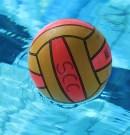 Wasserballergebnisse vom Saisonstart in der Bundesliga Frauen und der 2. Liga Männer