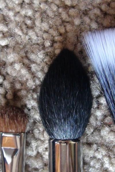 My top Favorite Brushes & Sigma Makeup Brush Giveaway!