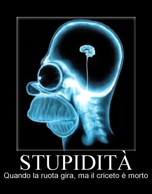 stupidita2