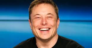 Tesla report: perdite ed … assicurazioni