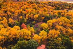 Video: Nature's Canvas