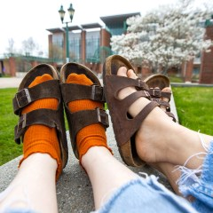 The Birks Are Back