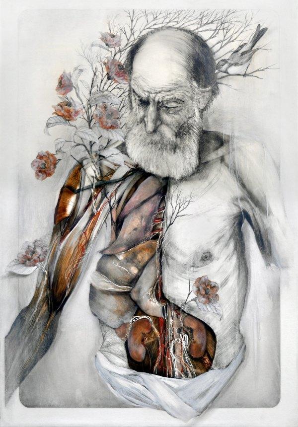 Dissected Splendor Nunzio Paci Visionary Anatomy