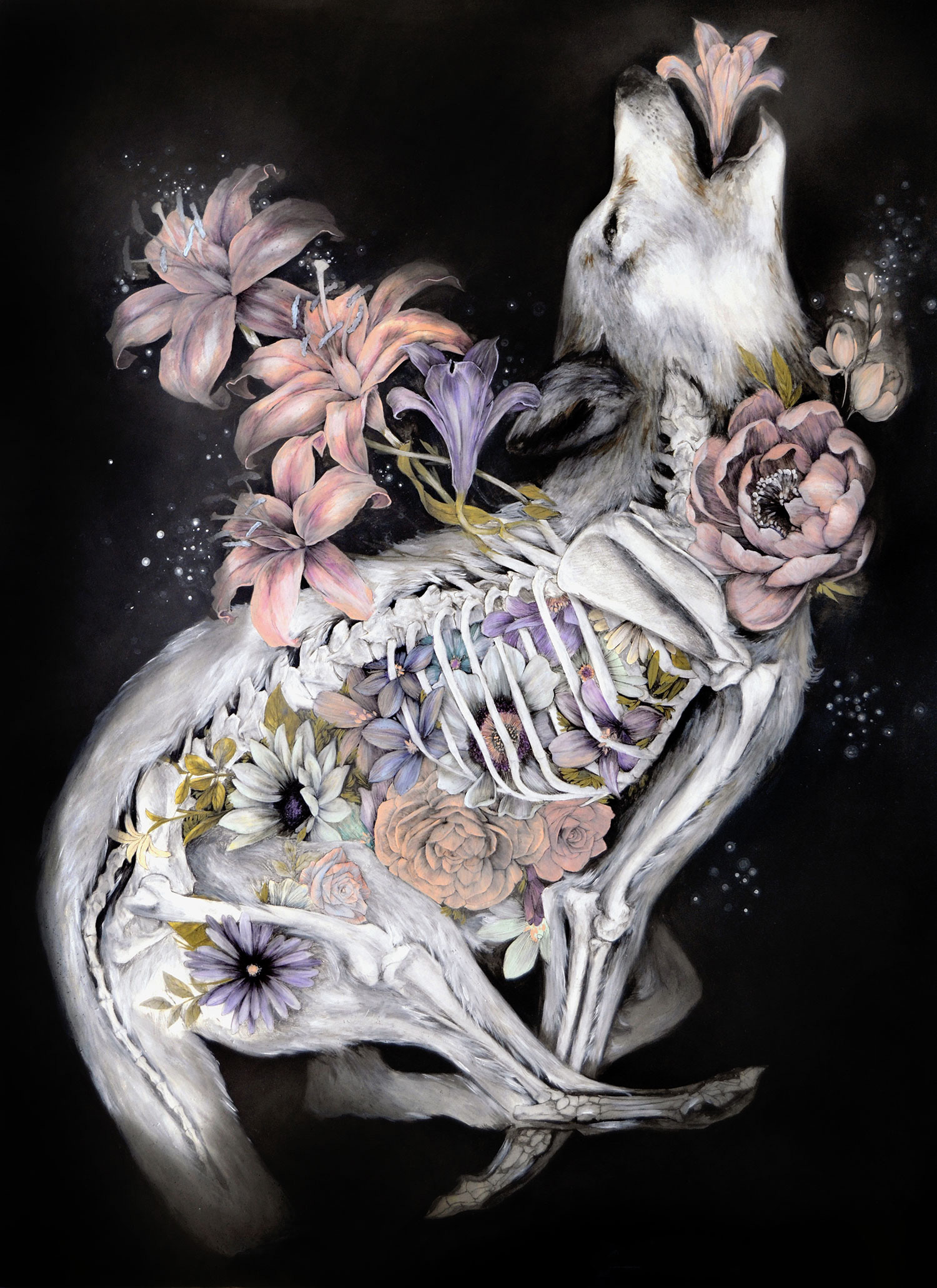 Mimesis In New Anatomical Paintings By Nunzio Paci