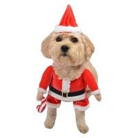 dog cheerleader costume : Target