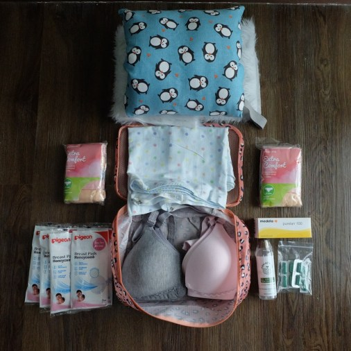 Pigeon breast pads, Inay Moments nursing bras, Naturali VCO and Mega Malunggay capsules from V Pharma, Disposable undies from Watsons, Iflin nursing cover, and nursing pillow from Nappy Pillows