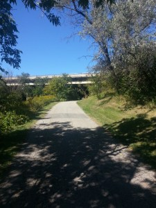 Betty Sutherland Trail (17)