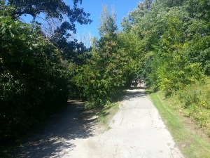 Betty Sutherland Trail (18)