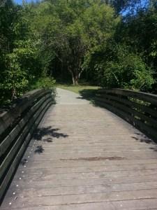 Betty Sutherland Trail (8)