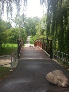 Smythe Park 13