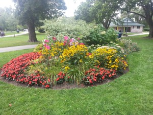 Withrow Park 9