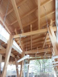 Scarborough Civic Centre Library Interior (1)
