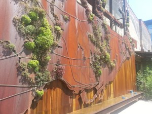 Evergreen Brickworks Toronto Ravine Map