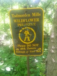 26. Wildflower Preserve Sign Borough of East York