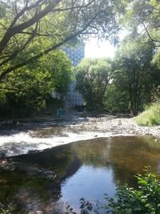 5. Akerselva river