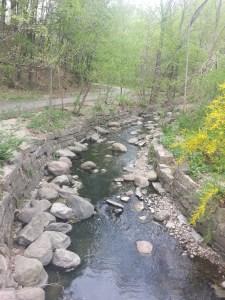 17. Beltline Trail Yellow Creek
