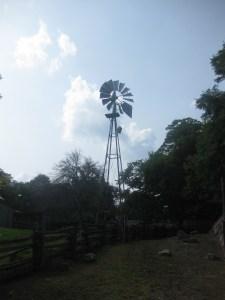9. Riverdale Farm