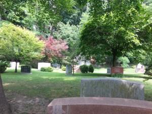 Mount Pleasant Cemetery 2