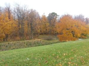 North Scarborough Green Loop East Highland Creek 3